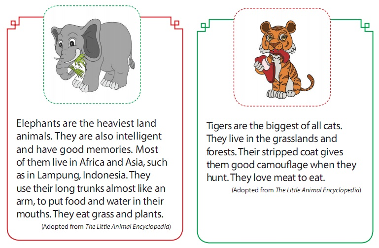 Contoh Report Text Tentang Hewan Animal Bahasa Inggris Smp Mts