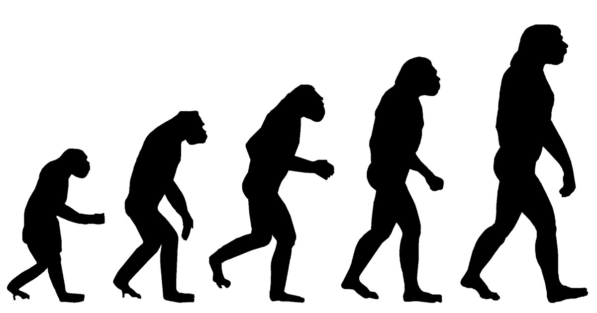 the catholic churchs views on darwins theory of evolution A religious campaign to block the teaching of evolutionary biology is taking an   even among us catholics 40 per cent still insist god created  paul ii reaffirmed  his church's commitment to the theory of evolution in 1996.