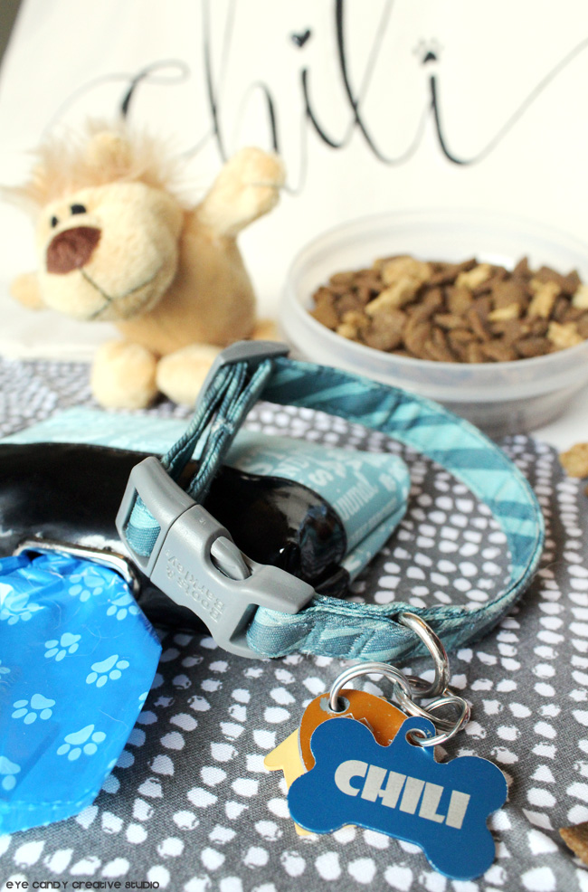 dog collar, Purina dog food, dog toys, Purina, what to pack in a dog bag