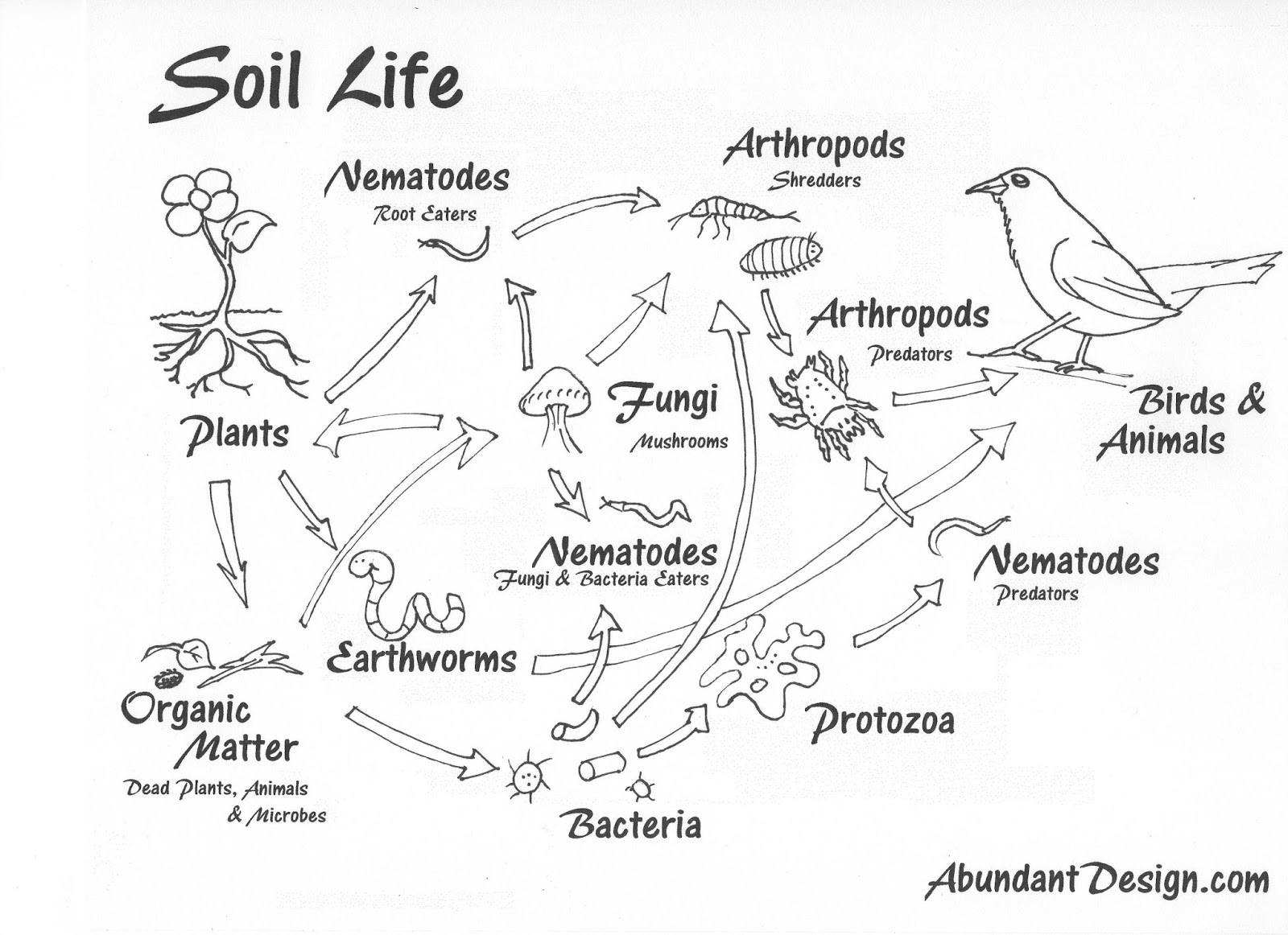Kinds Of Soil Page Coloring Pages