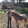 Cort finds a pony just his size!