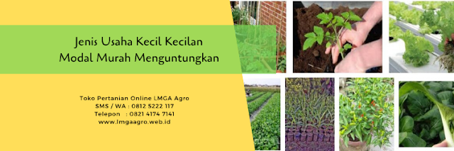 usaha kecil kecilan,usaha pertanian,toko pertanian,pertanian,lmga agro