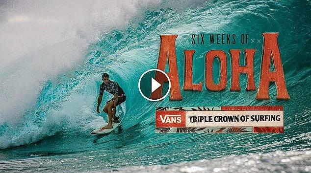 6 Weeks of Aloha