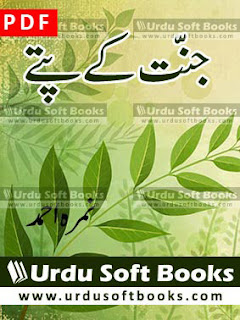 Jannat K Pattay Novel