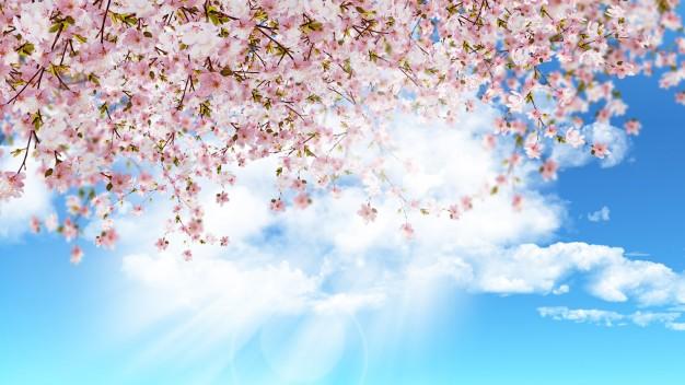les-petits-plaisirs-du-printemps