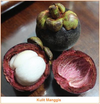Kandungan dan Manfaat Kulit Manggis - Bahan Pangan Hasil Samping Kulit Manggis