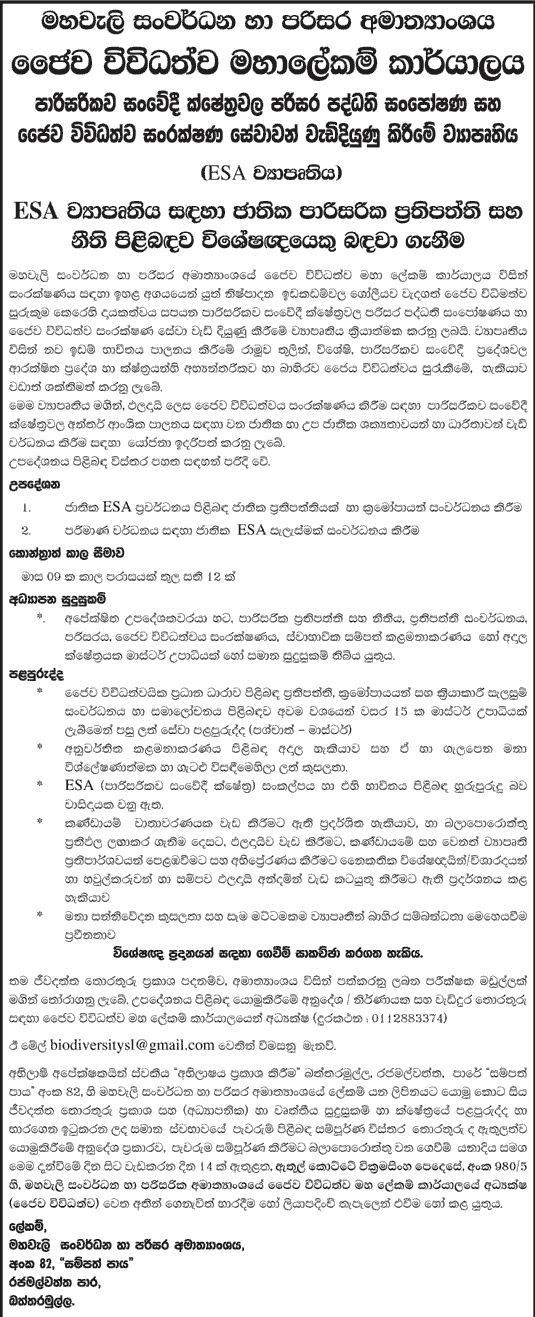 Sri Lankan Government Job Vacancies at Ministry of Mahaweli Development and Environment.