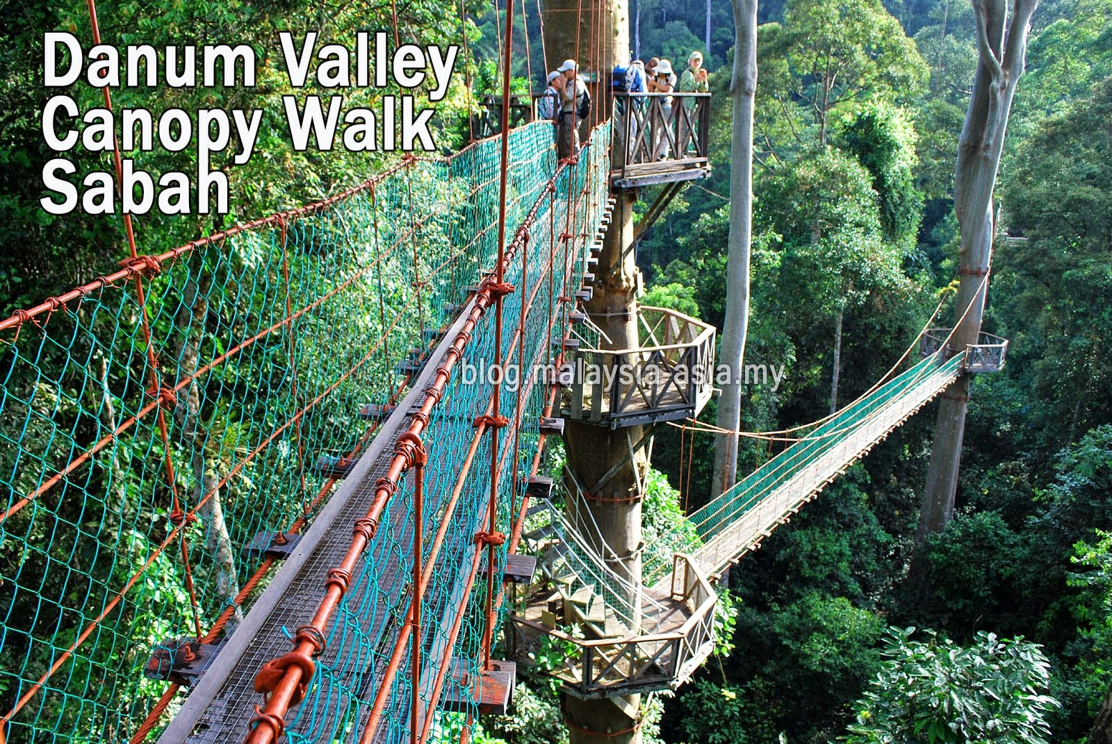 Danum Valley Canopy Walk Sabah