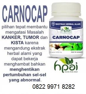 Jual Obat Tradisional Alami Tumor Kankercarnocap Hpai Asli Herbal Original