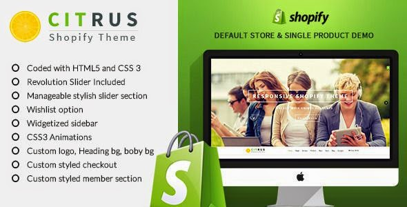 Best Shopify Theme 2015