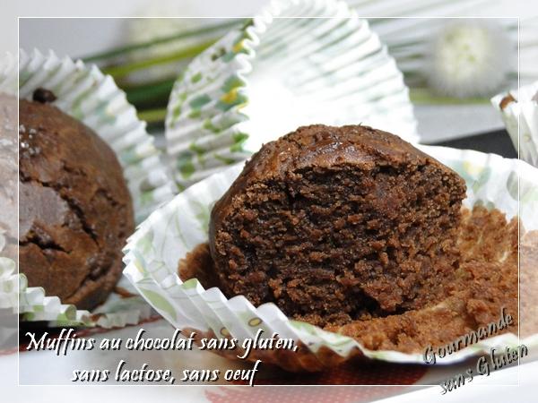 Muffins au chocolat, sans gluten, sans lactose, sans oeuf
