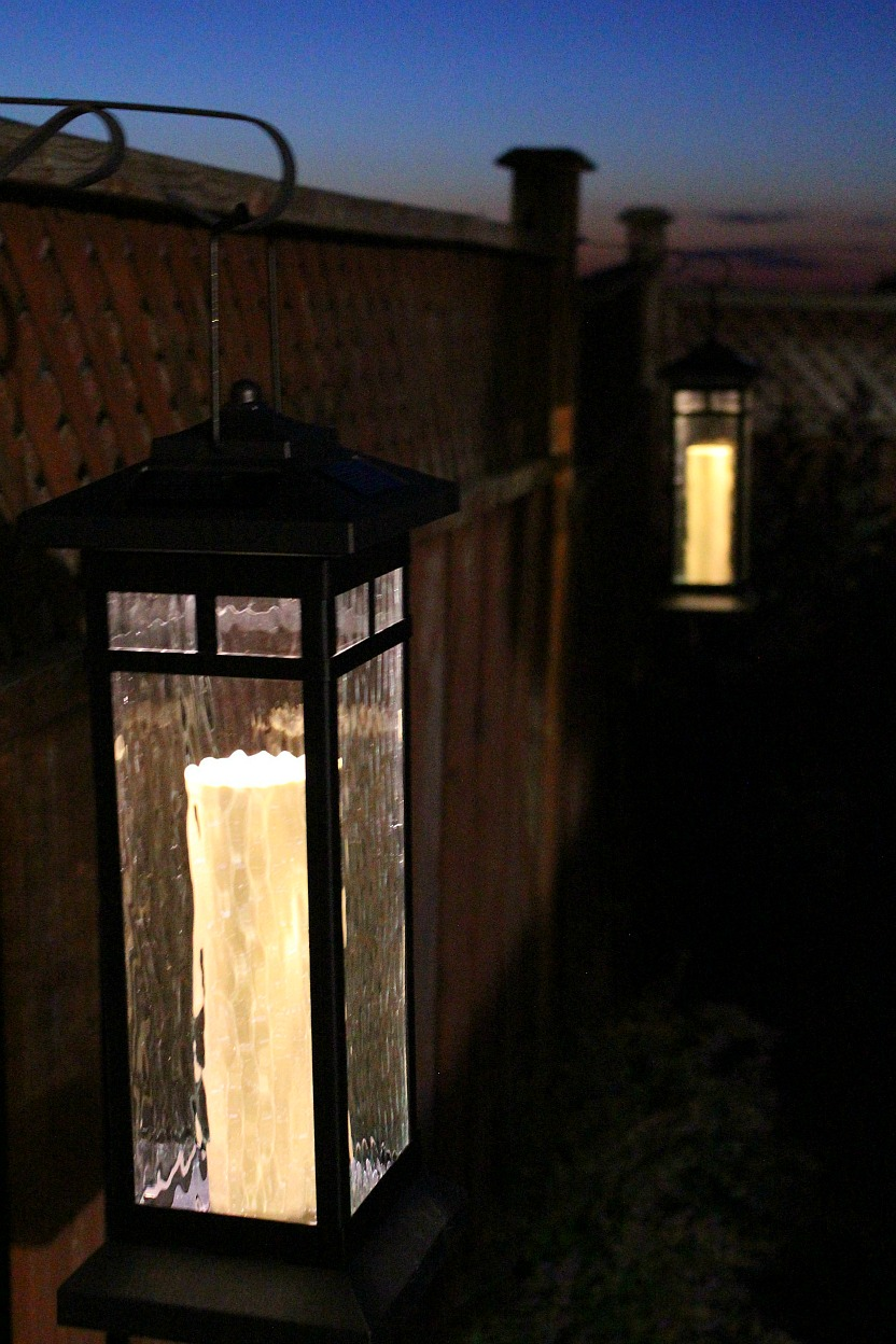 turtles and tails solar lanterns glowy backyard. Black Bedroom Furniture Sets. Home Design Ideas
