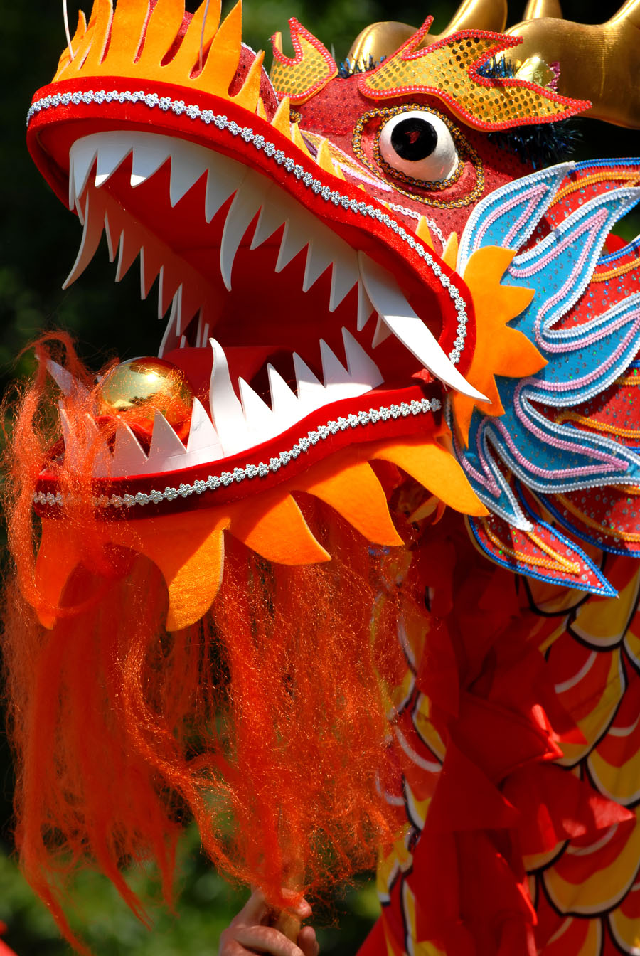 China Dragon: Positive Experiences For Tween Girls: Celebrating The