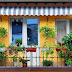 Awnings: Give Your Home Perfect Retraceable And Modeling Look