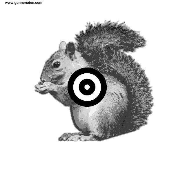 Wild image regarding printable squirrel target