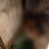 Mato Grosso| Mulher reage a agressões, mata marido e é presa em bar com roupa ensanguentada, diz polícia