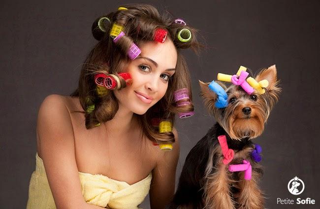 Cãozinho de solteiro: estilo de vida
