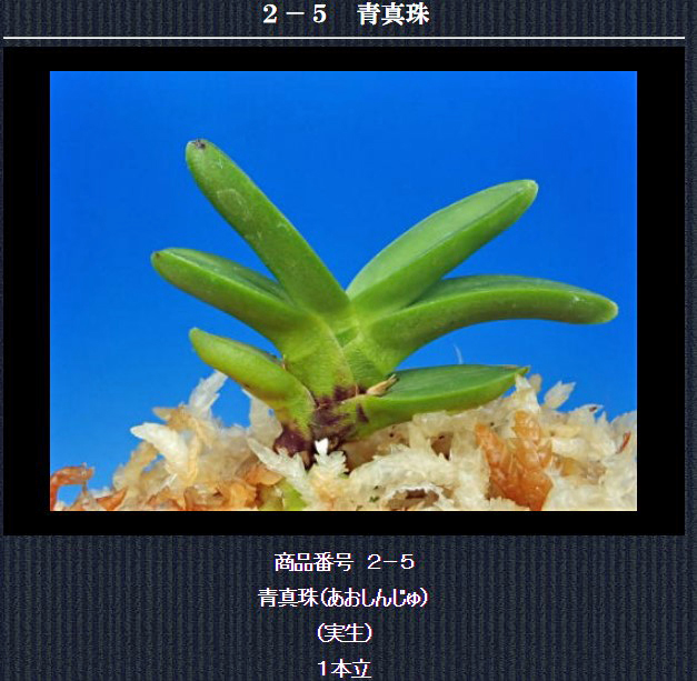 http://www.fuuran.jp/2-5.html
