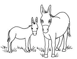 Donkey At Farm Coloring Pages