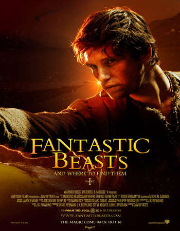 Poster Of Fantastic Beasts and Where to Find Them 2016 Hindi Dual Audio 600MB BluRay 720p ESubs HEVC Free Download Watch Online downloadhub.in