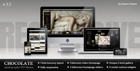 Premium Responsive Photography Theme