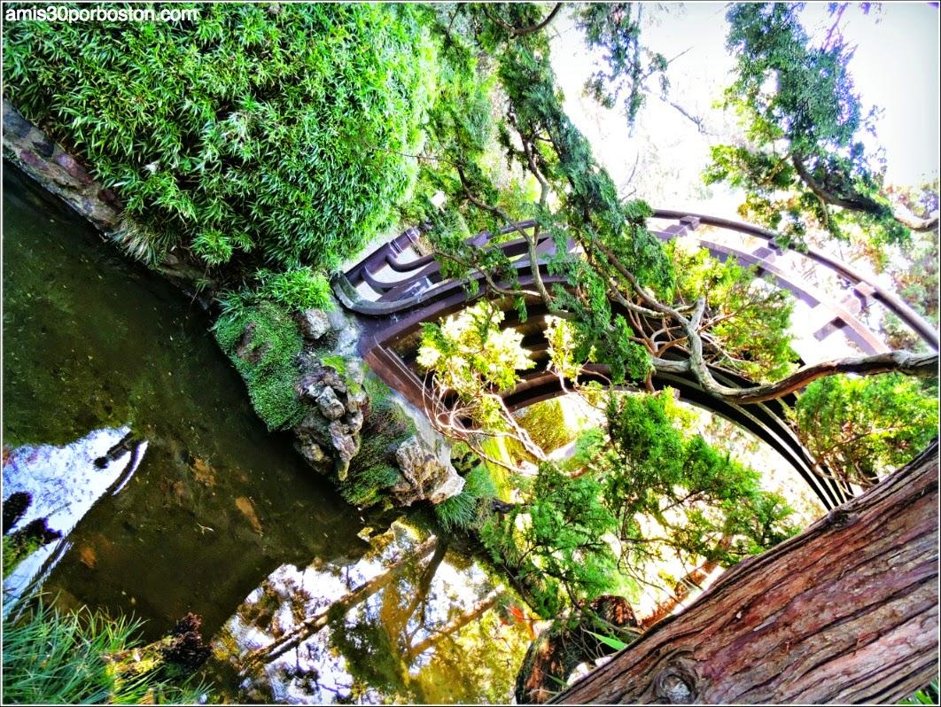 Puente Luna, Japanese Tea Garden: San Francisco
