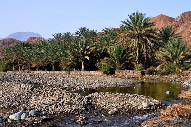 Drogi przez wadi – dlaczego są tak zbudowane ?