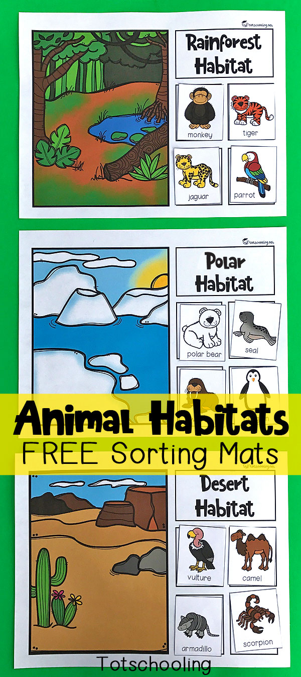 FREE printable sorting mats for preschoolers and kindergarten kids to learn about animals and their habitats. Great science and nature activity that kids will love! Includes rainforest, ocean, desert, polar, woodland and wetland habitats.