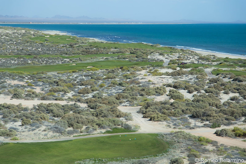 Nicklaus Design Course at Puerto Peñasco Things to Do in Puerto Peñasco