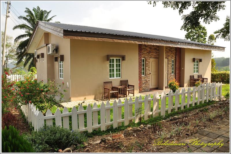 Lagi Bentuk Cottage Yang Menarik Serta Simple