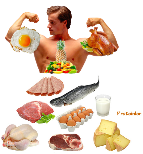 Muscle Growth Diet