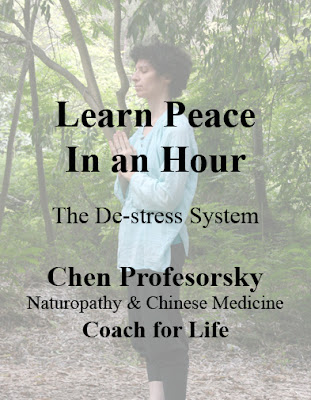 learn peace in an hour - my book