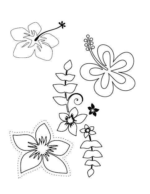 Hawaii Coloring Page New