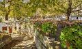 Το γραφικό χωριό του Πηλίου με τον διάσημο «Μουτζούρη» (φωτο)