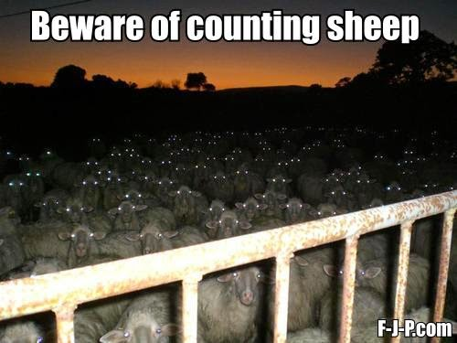 Funny Beware Counting Sheep Meme Picture