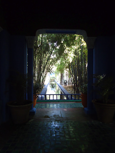 majorelle+marrakech+gardens