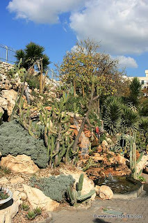 Cactus Garden in Holon – Cacti and desert plants in Holon