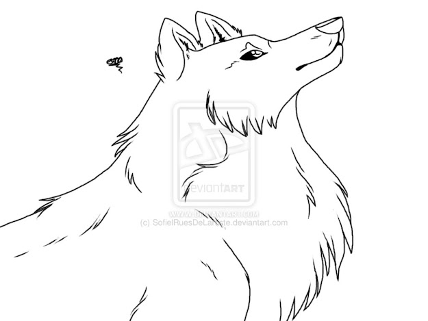 Wolf Coloring Book Pages Coloring Page