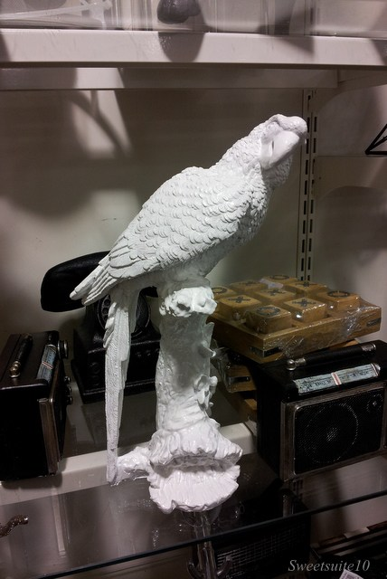 Ceramic parrot at HomeSense