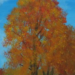 Autumn Tree Line