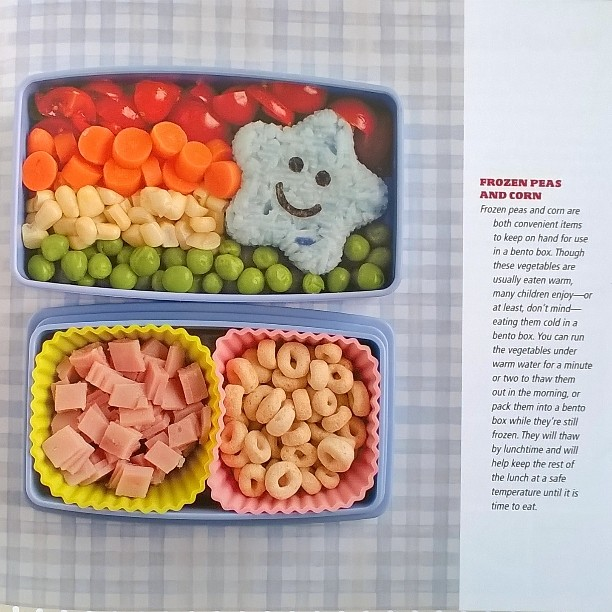 Review Everyday Bento 50 Cute And Yummy Lunches To Go By