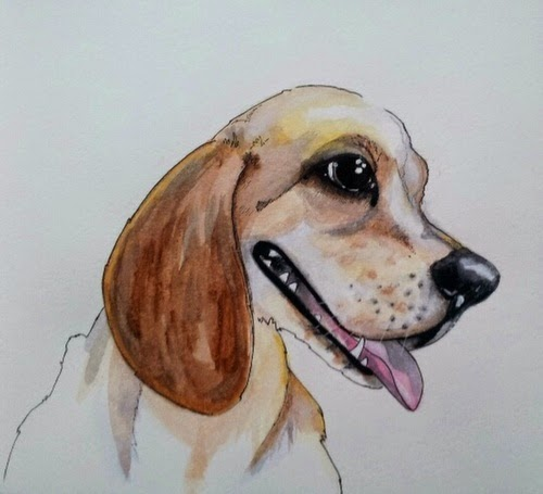 Whoopidooings:Carmen Wing - Neocolour ii Portrait #100Facesin365 #Face #Dog #Beagle