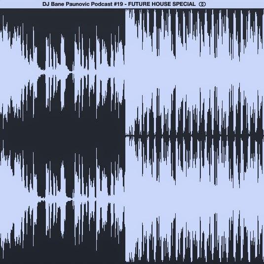 Podcast Episode 19 - FUTURE HOUSE SPECIAL DJ BANE PAUNOVIC