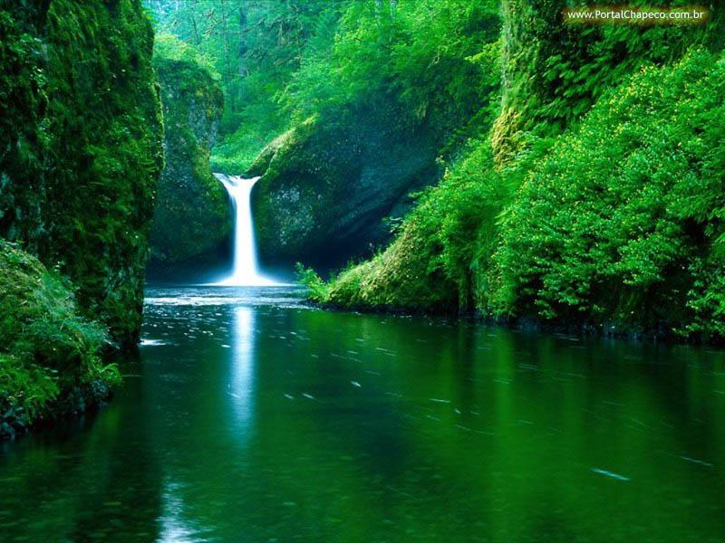 #Natureza, Leis Naturais da Natureza