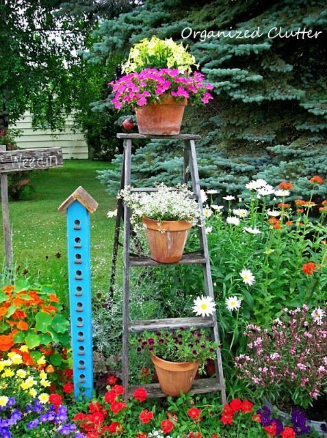 Condo Birdhouse and Step Ladder in the Garden