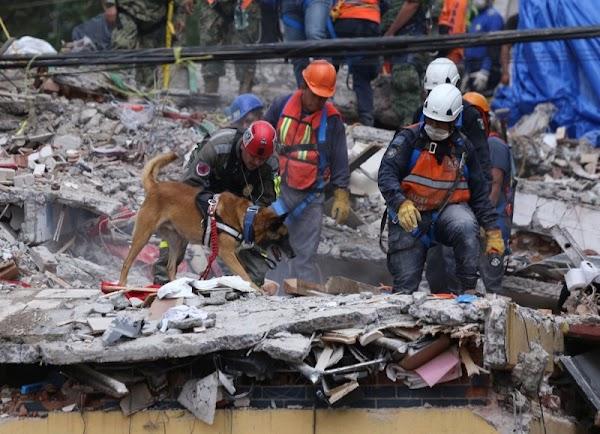Topos chilenos rescatan a 7 personas en derrumbe de Lindavista.