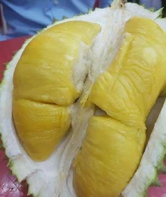 Tips Memilih Durian Yang Terbaik