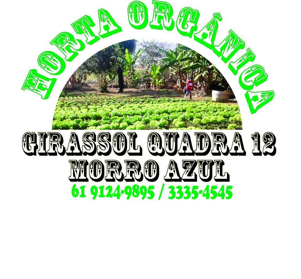 Horta Orgânica Girassol