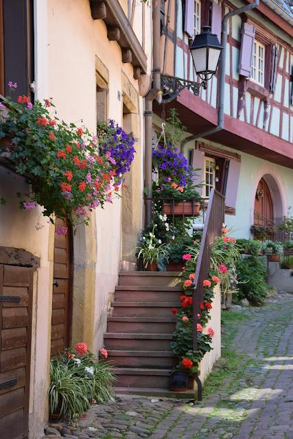 Colmar - zdjęcie 2 - Francuski przy kawie