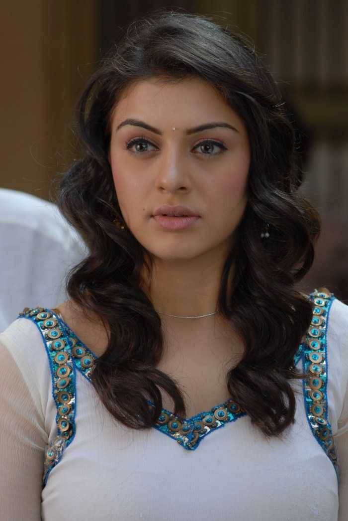 Hansika Motwani Latest Cute Photos  Hotstillsupdate -5692